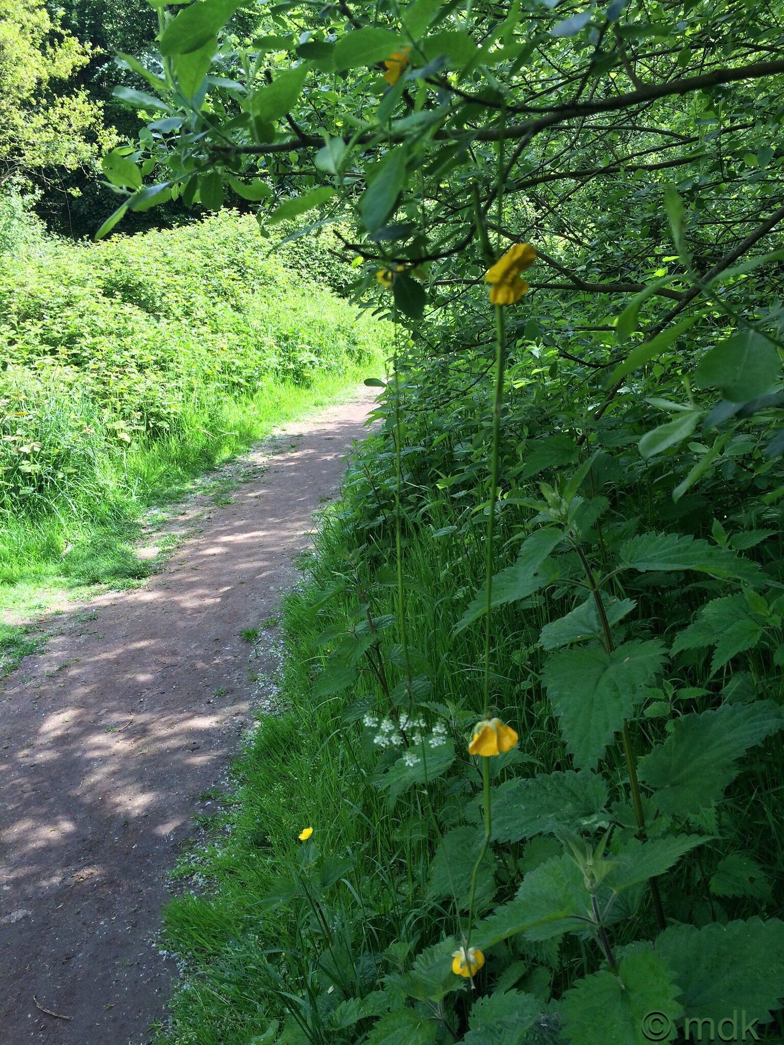Wildflower chain