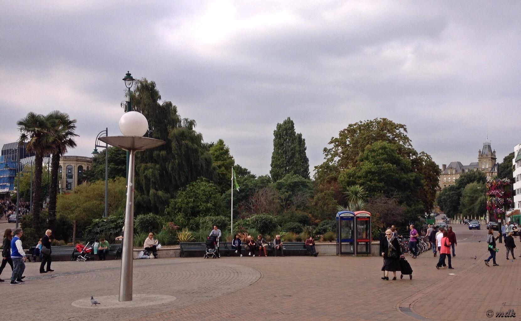 image966