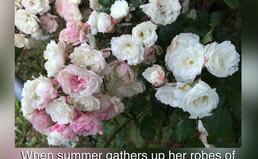 Last days of summer – first published 3 September 2014